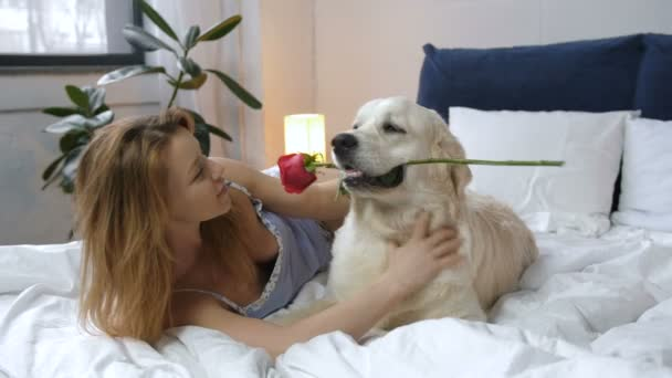 Happy woman petting dog for red rose as a gift