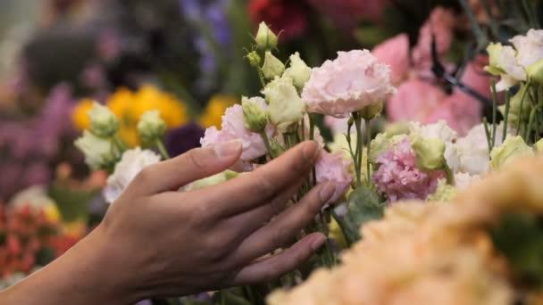 Női virágárus kéz finoman megérinti a virágokat a boltban