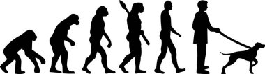 German shorthaired pointer evolution with silhouettes