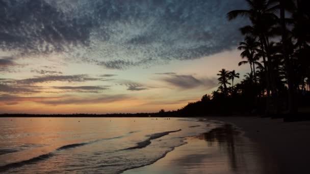 Alba sopra gli alberi di palme e della spiaggia di isola tropicale
