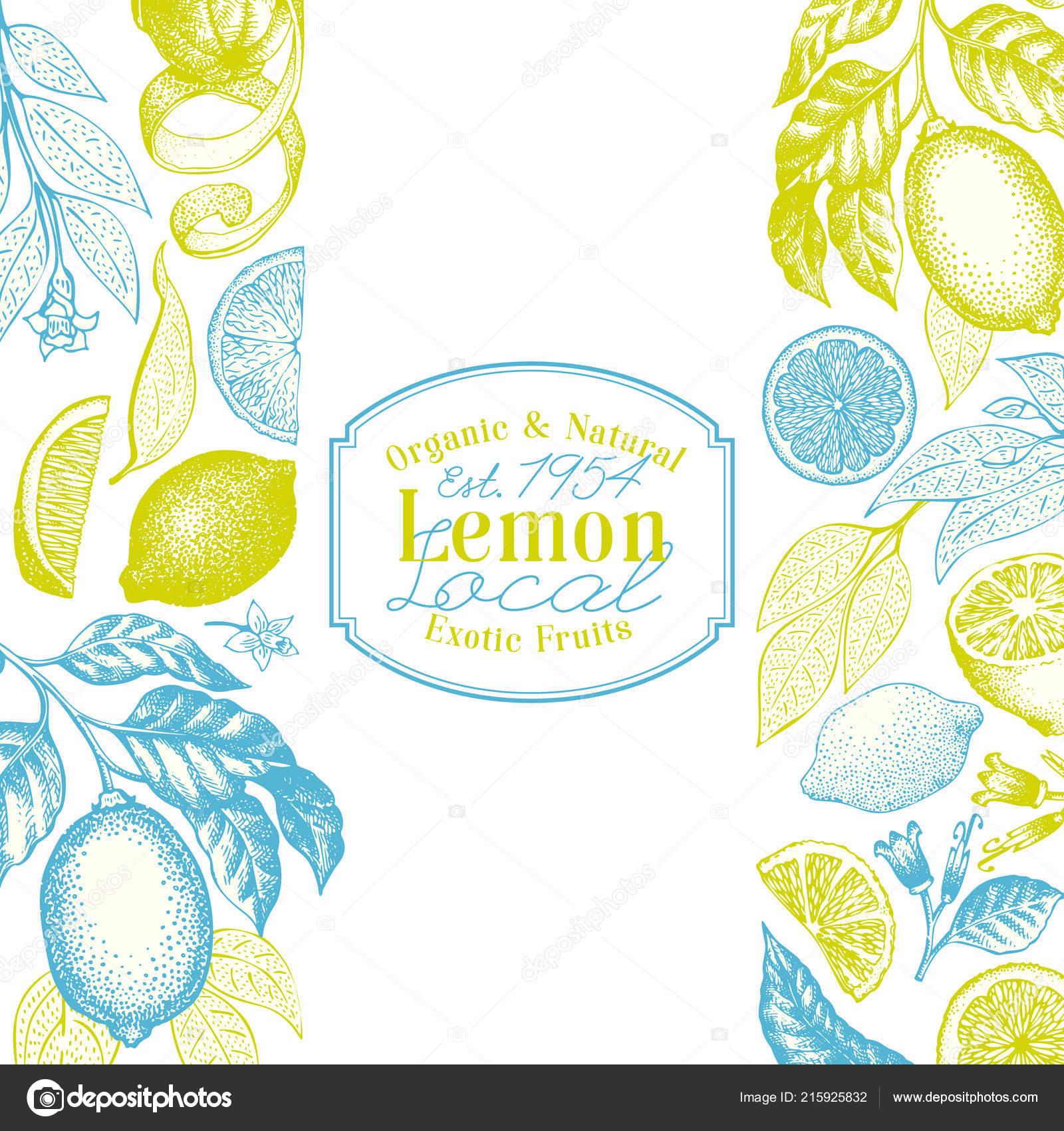vintage citrus background lemon tree design template hand drawn