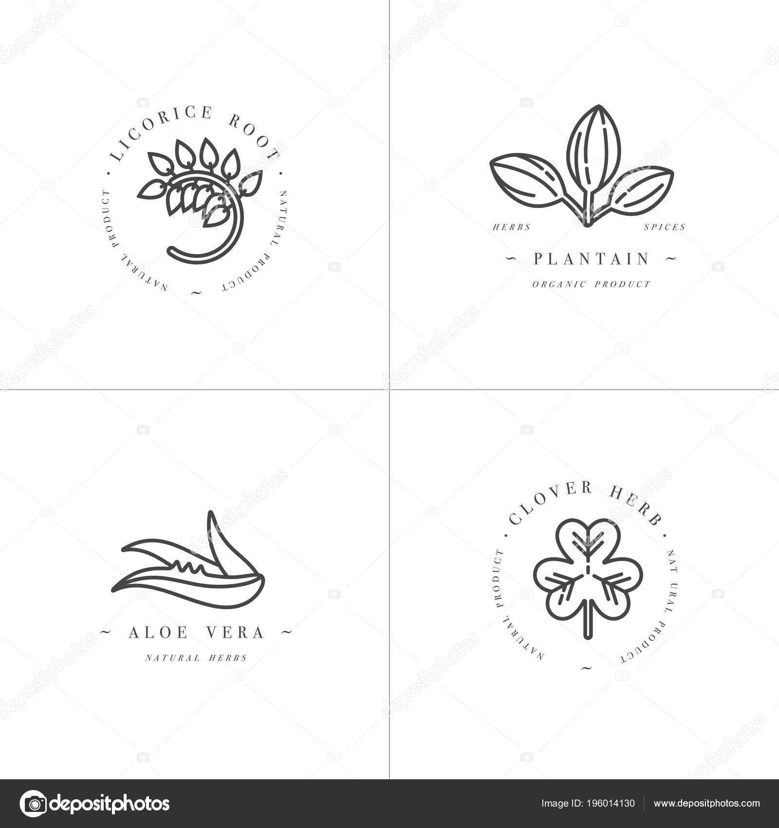 Vector onochrome establece plantillas de diseño y emblemas ...