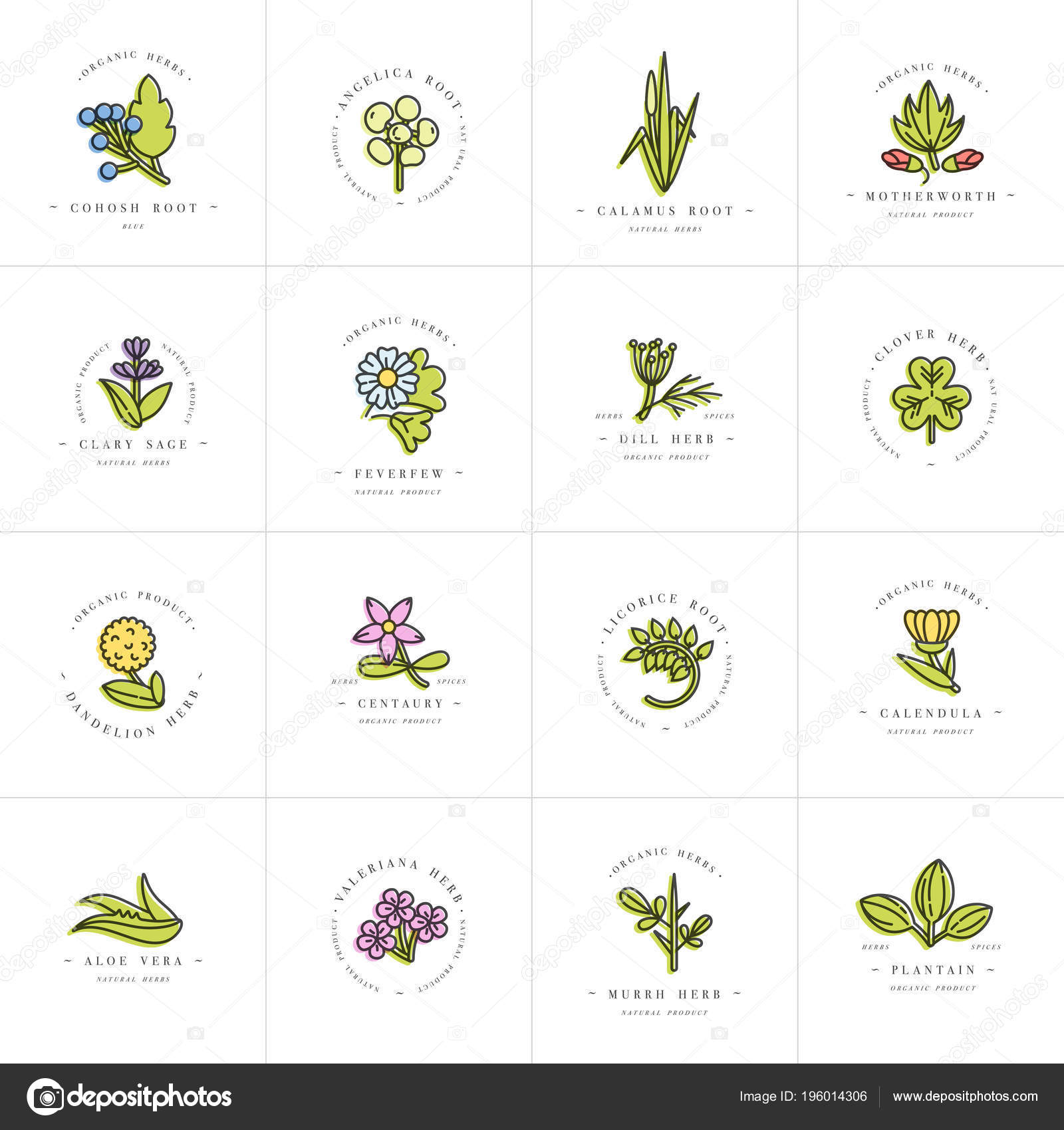 Vector colorful set design templates and emblems - healthy