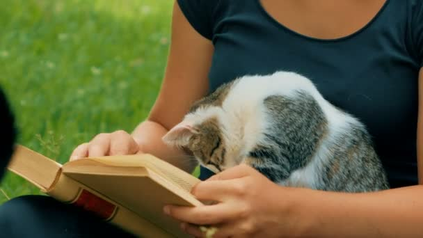girl detail reads a book with a kitten playing with pages of the book