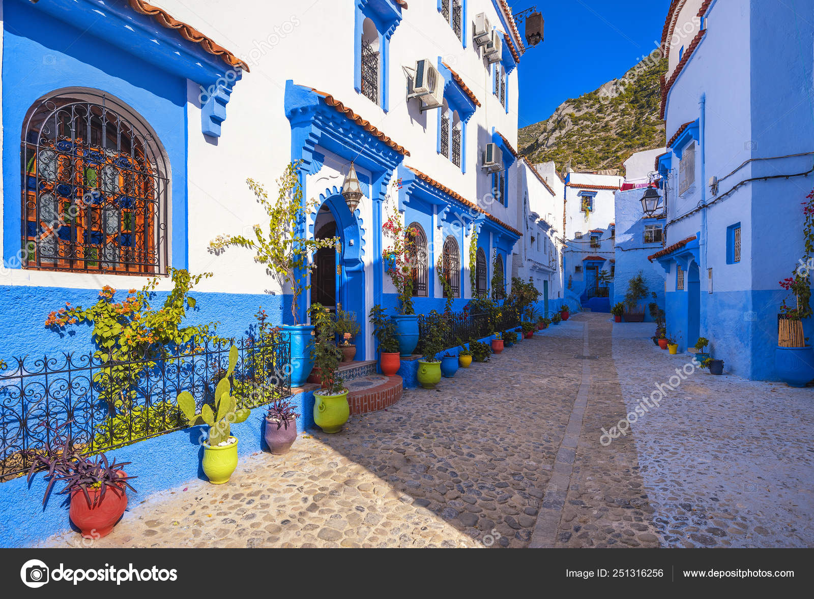 Blue Walls Chefchaouen City Medina Morocco Bright Doors Colorful Flower Stock Photo Image By C Dsaprin 251316256