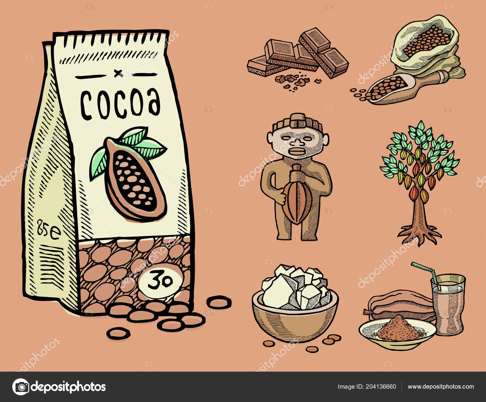 Vector Kakao Produkte Hand Gezeichnete Skizze Doodle Essen