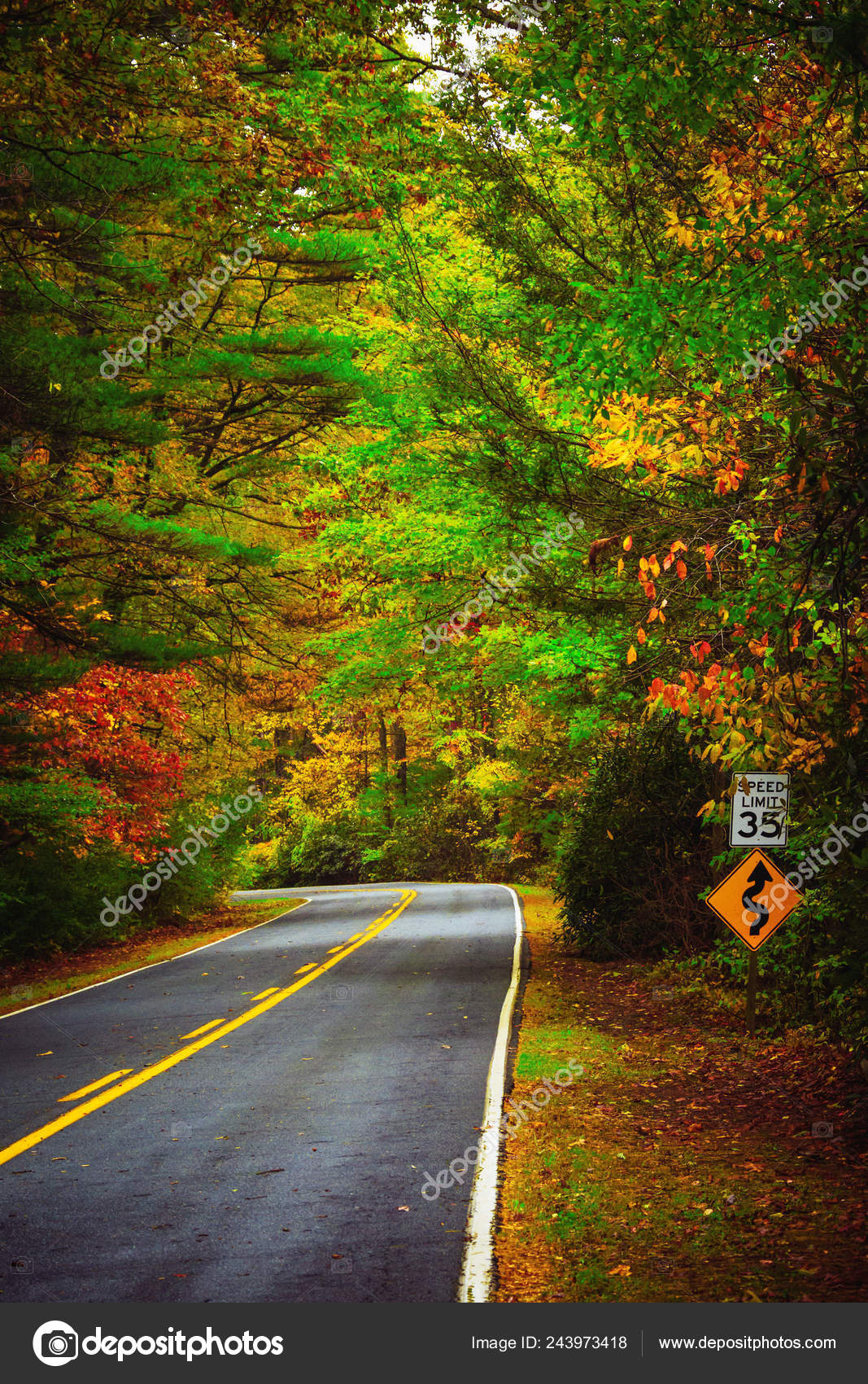Colorido Autumn Forest Path Natureza Deixa Arvores Lotadas Orange Red Park Road Trail Caminhada Ao Ar Livre Stock Photo C Hunterbliss 243973418