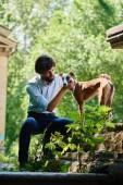 Mann in Hemd und Hose Hund sitzend im Sommerpark betrachten
