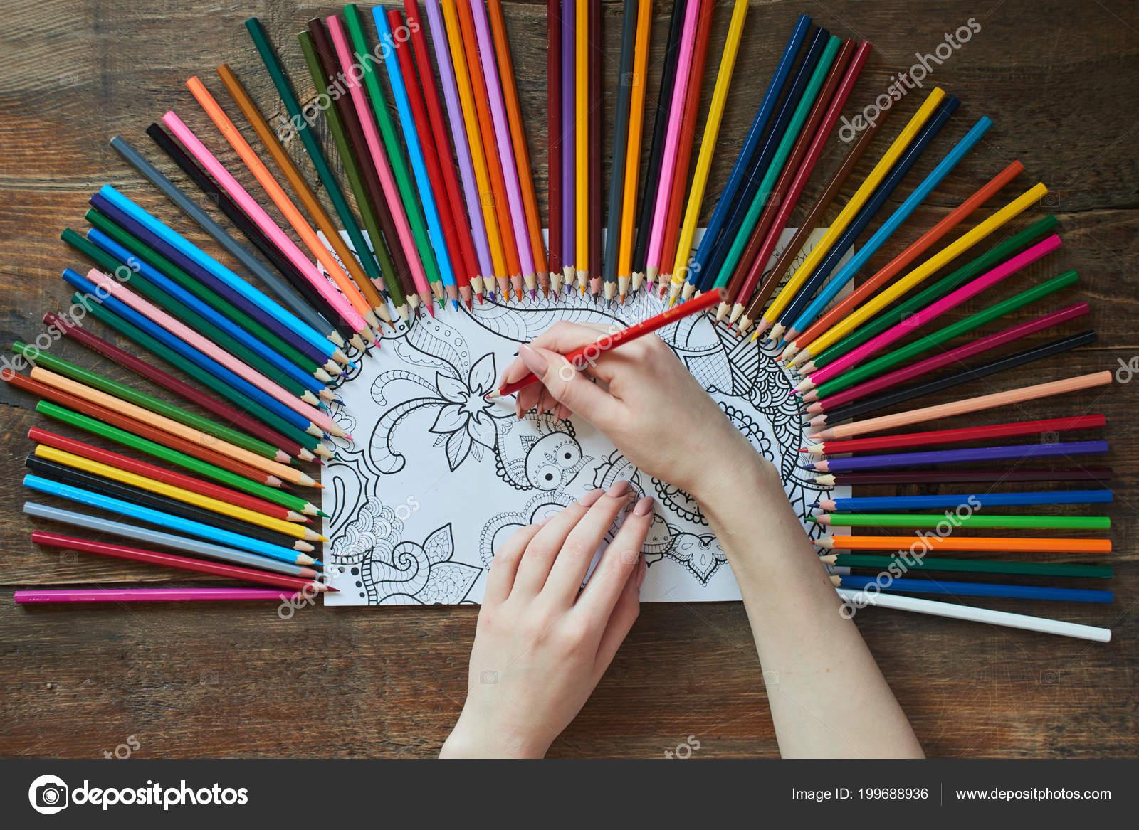 Manos Femeninas Para Colorear Imagen Mesa Madera Con Lápices Vista ...