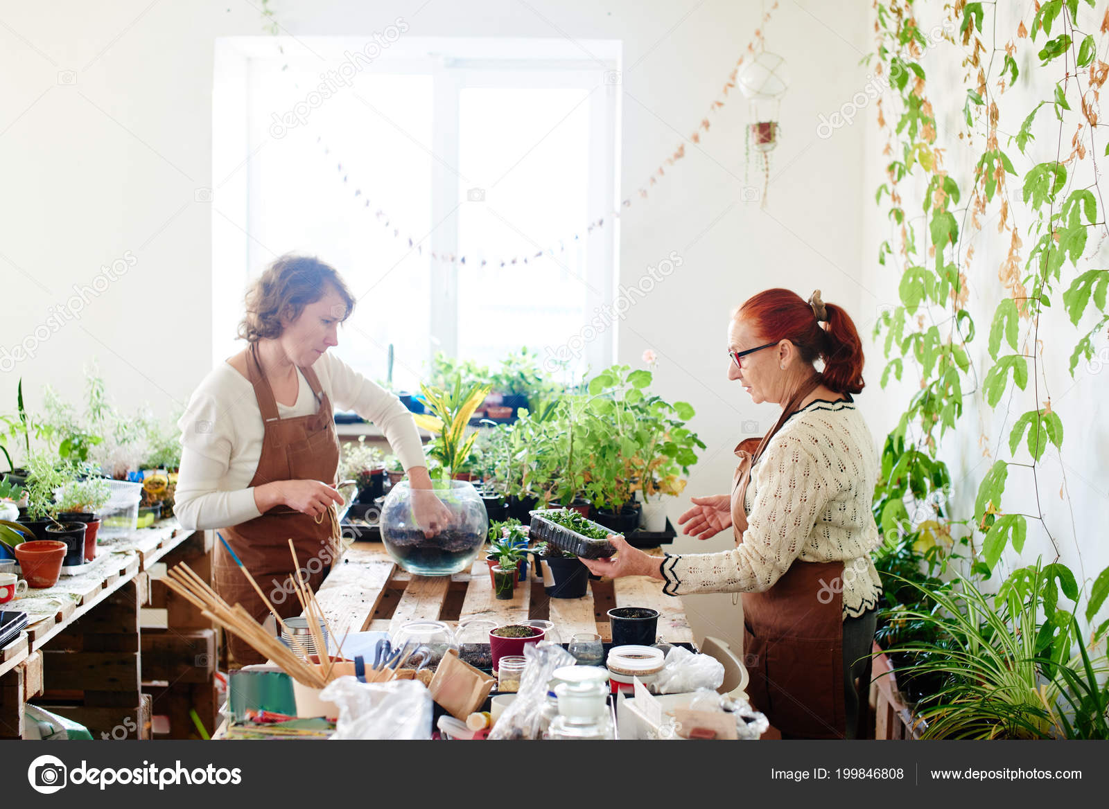 Growers Making Mini Terrarium Plants Sunlit Room Stock Photo