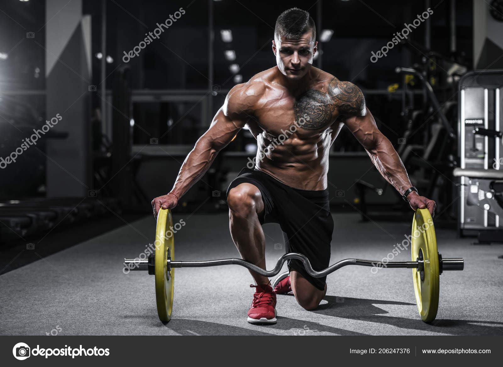 cd534ad29f6 Handsome strong bodybuilder athletic man pumping up muscles workout  bodybuilding concept background - muscular bodybuilder handsome men doing  exercises in ...