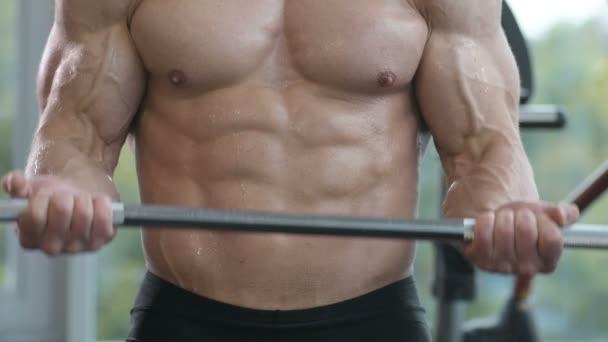 Bělošský atletický muž cvičí nabírat bicepsy. Silný kulturista se šesti balení, perfektní svaly, triceps, hrudník, ramena v tělocvičně. Fitness a kulturistika koncepce