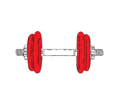 dumbbell for healthy lifestyle and sport