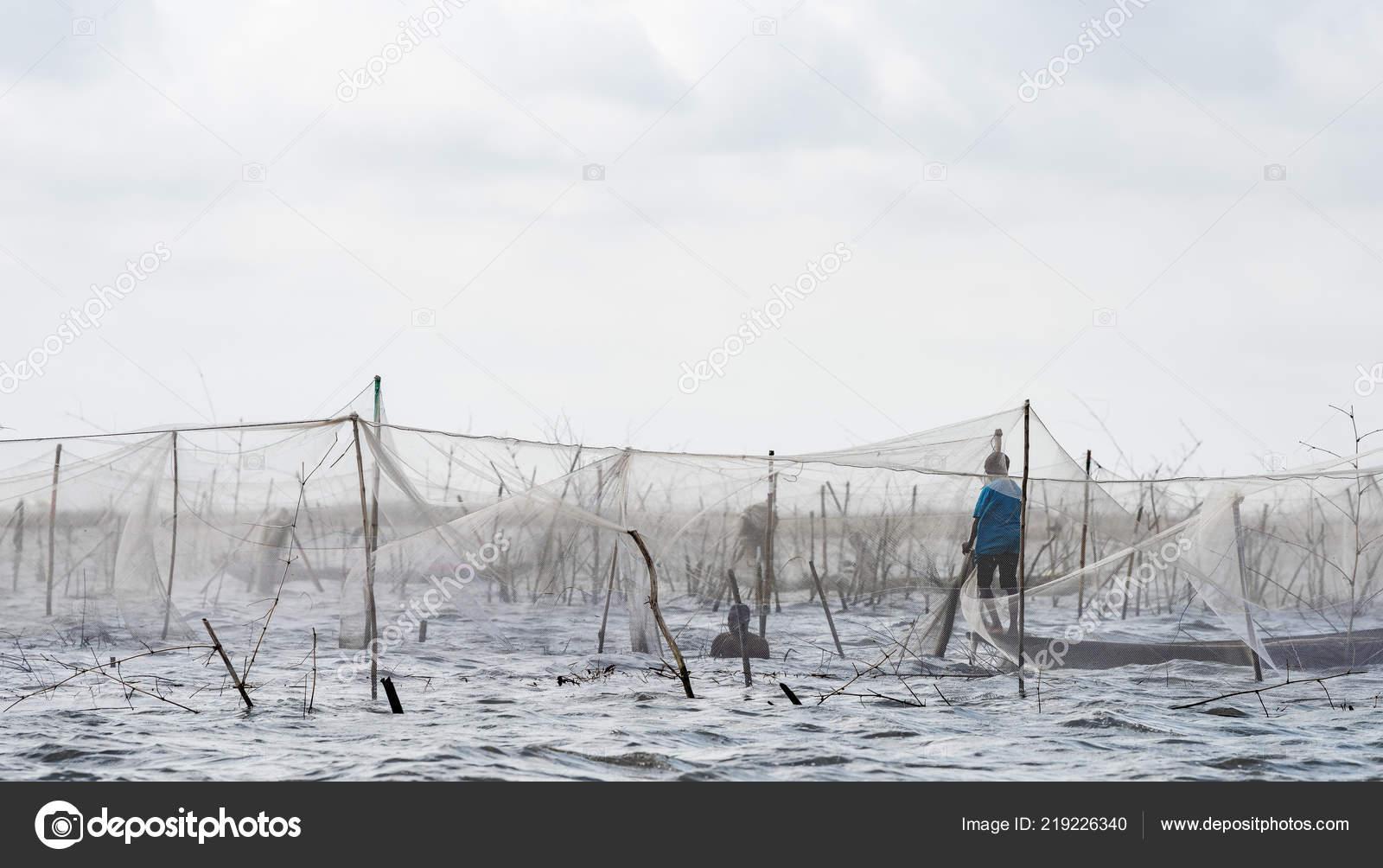 Fisherman Fishing Ganvi Benin Lake Nokou Lifestyle African