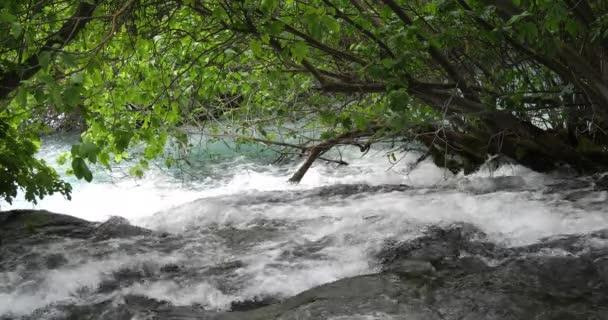 Vodopád Skradins, Skradinski Buk, Přírodní park Krka, Poblíž Šibeniku v Damaltii, Chorvatsko