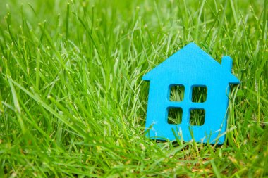 Eco house in nature. Symbol of  house blue on green grass in summer. Copy space for text