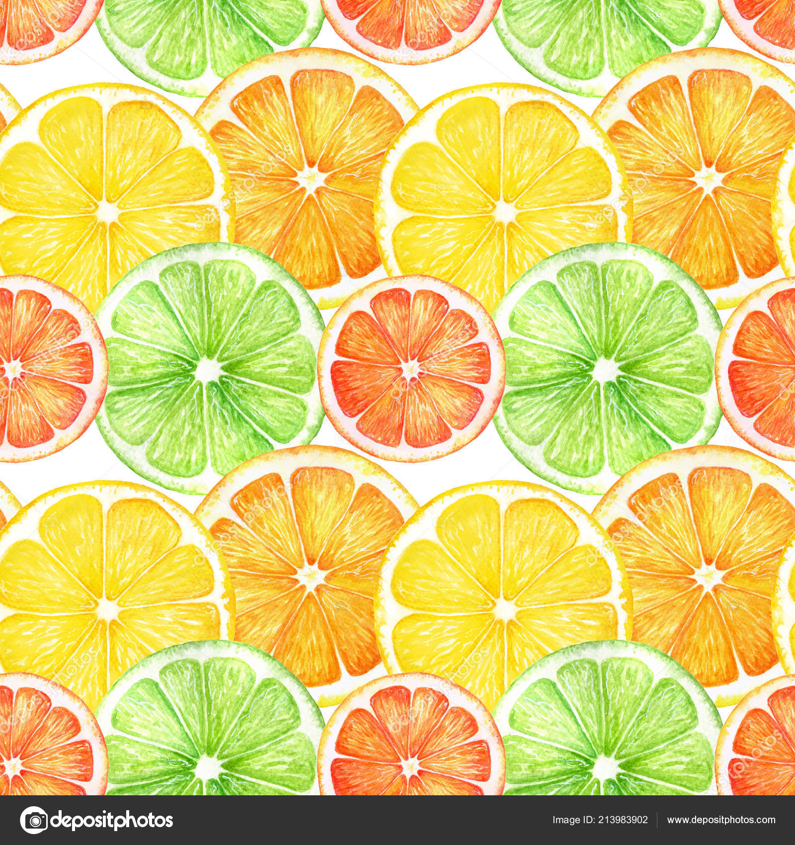 depositphotos 213983902 stock photo citrus slice fruits watercolor hand
