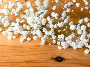Gypsophila Paniculata, Babys breath flowers on wooden background. Flat lay composition.