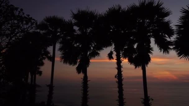 Person enjoying beautiful sunset at seaside