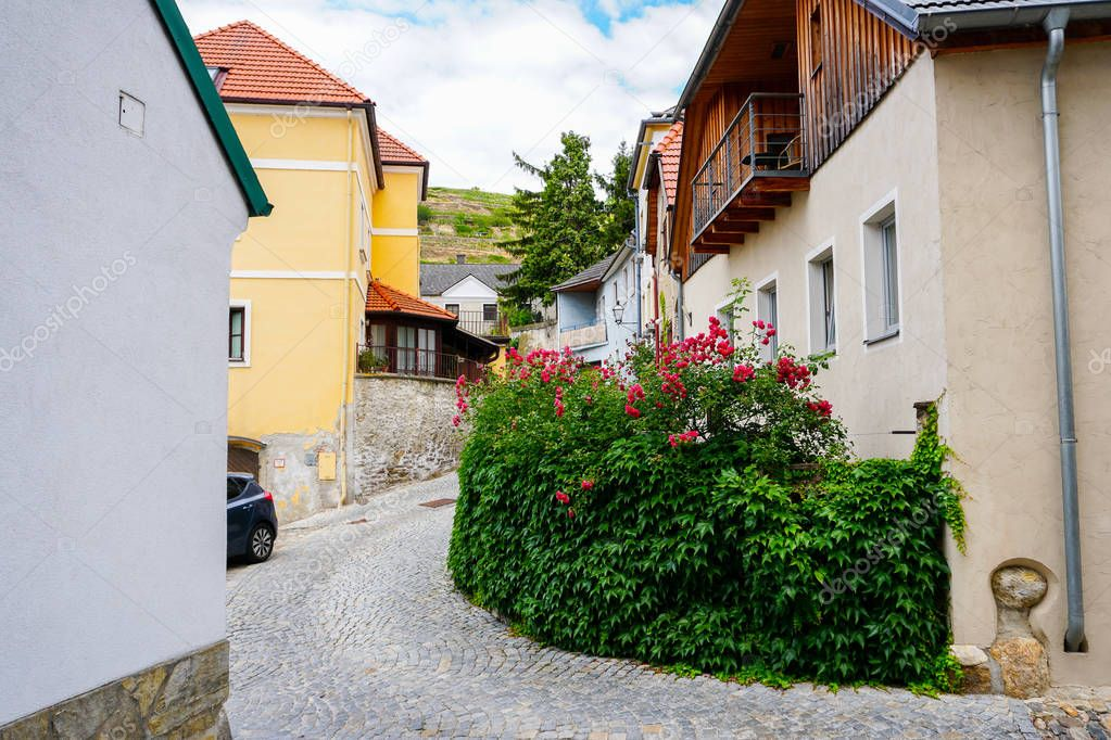 Austrian rural buildings decorated with plants.