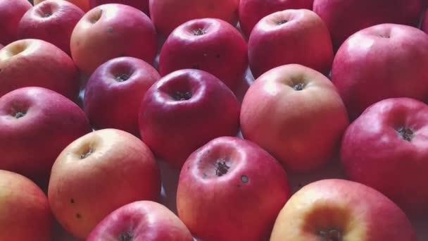 Apples background camera moving diagonally