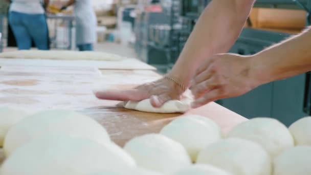 Professional baker is forming pieces of dough in bakery commercial kitchen.