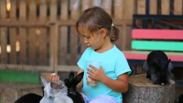niedliches Mädchen füttert Kaninchen aus den Händen