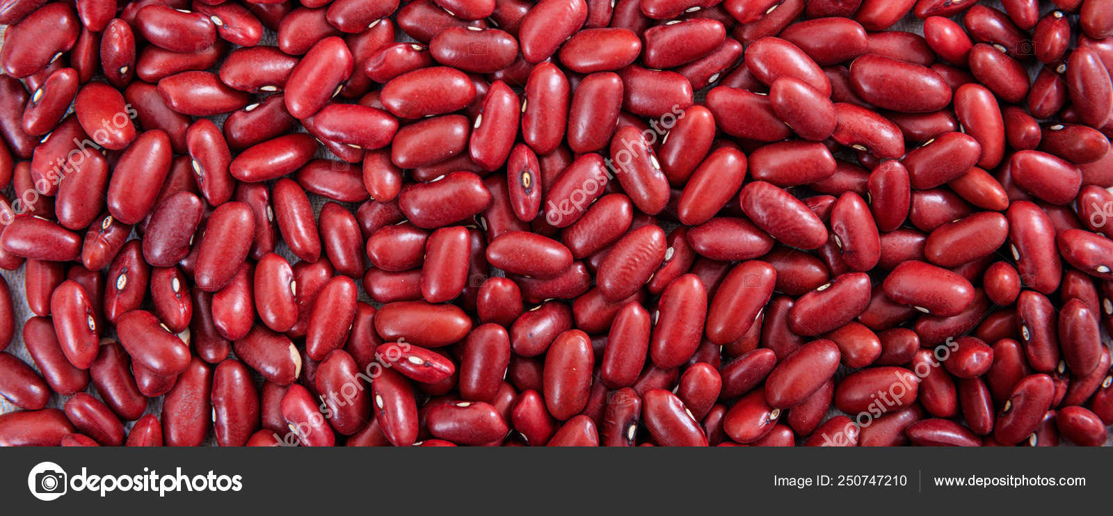Red Dry Kidney Beans Uncooked Full Background Banner Top View Stock Photo C Gioiak2 250747210