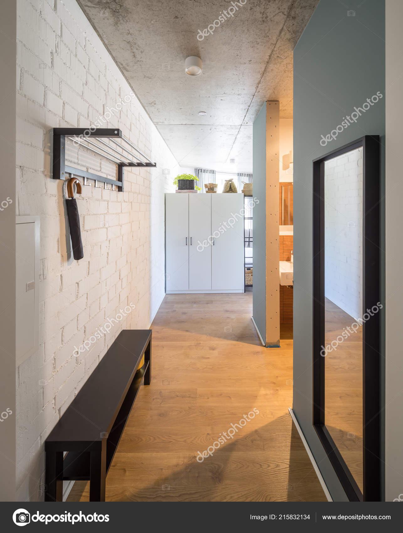 Hall D Entrée Moderne entrance hall and corridor in a modern apartment. entrance