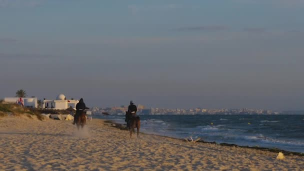 Two horse riders running away on seashore, rear view