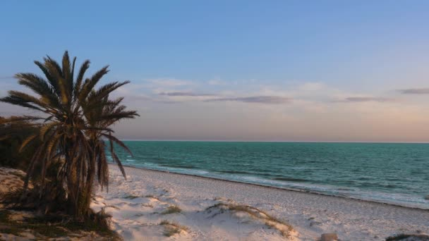 Krásné barevné krajina s palem na písečné pláži