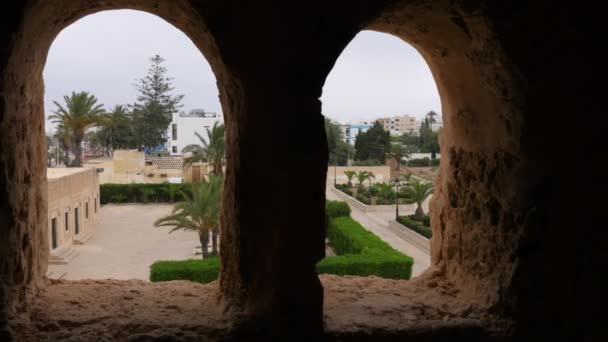 View from window of ancient building on palm trees and green plant in city park