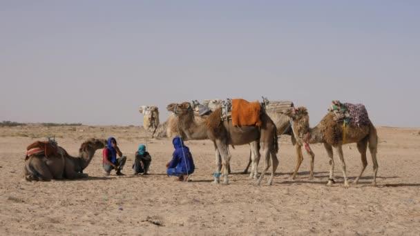 Douz, Tunisia - 10 June 2018: bedouin man sitting on sand and camel in Sahara desert. Arab men graze desert camel.