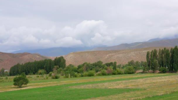 Zelené trávy na louce v létě na krajinu vysočiny a zamračená obloha timelapse