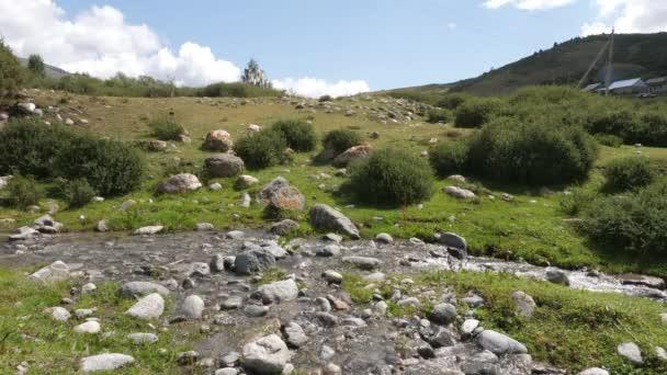 Gyönyörű táj, a folyó, a kövek és a zöld-völgy