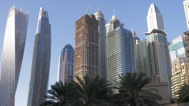 City landscape modern glass skyscrapers and palm trees in Dubai Marina
