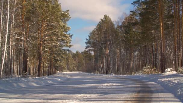 Leere Autostraßen und verschneite Wälder im Winter. Winterliches Naturkonzept