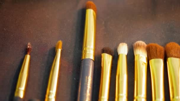 Set cosmetics brushes for applying eyeshadow, powder and blusher in makeup studio