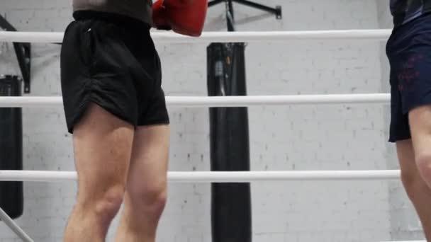 Stíhačky nízko kopací nohy vlak domácí tělocvična sportovní kroužek