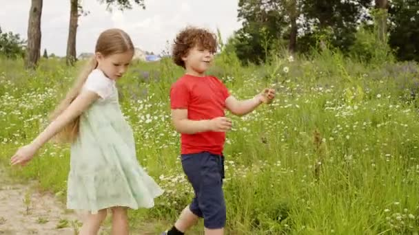 Playful boy and girl walking on grass meadow at summer vacation. Cheerful brother and sister having fun on green lawn. Summer children activities outdoor.