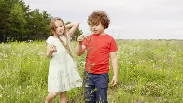 Young girl and boy looking flowers and plant at green meadow in village. Little sister and brother walking on countryside field at summer vacation.