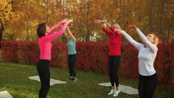 Fitness nő edzés jóga gyakorlat őszi parkban. Csoportos jóga nő edzi az ászanát a Városligetben. Sport nők integetett kezét jóga osztály szabadban.