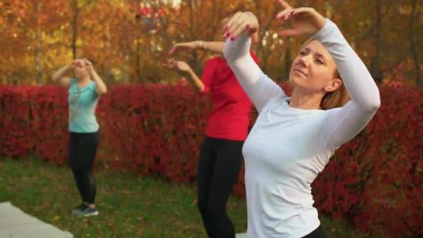 Sporty focused women training and dancing in park
