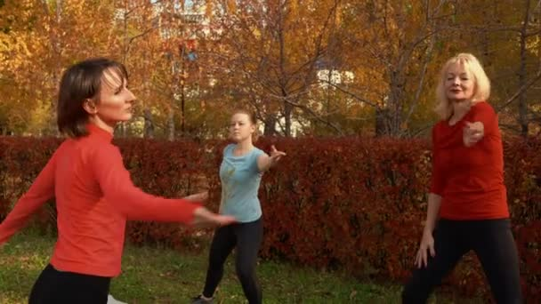 Women training choreography on autumn park background. Fit woman practicing yoga on outdoor class in autumn park. Sport woman dancing on outdoor gym.