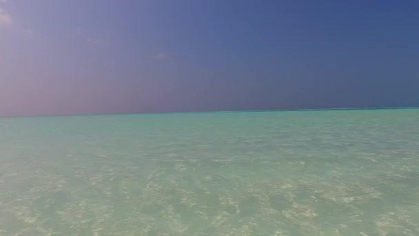 Teplá turistika mořského pobřeží pláž volně žijící zvěře transparentním mořem a bílým pískem pozadí v blízkosti palem