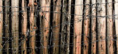 Barbed wire and wooden planks. Old wooden fence in prison