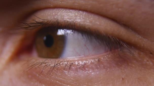 männliche braune Augen aus nächster Nähe