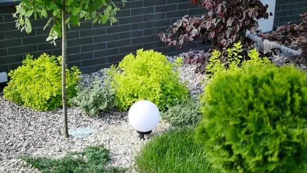 Zelený trávník, krajina formální, přední yard je krásně navržen zahrada