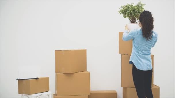 Das junge Paar zog gemeinsam in eine neue Wohnung. Frau stellt einen Blumentopf auf den Kasten und der Mann ergreift sie zum Tanzen. Sie tanzen Walzer. Kopierraum. Action, Animation. 4k.