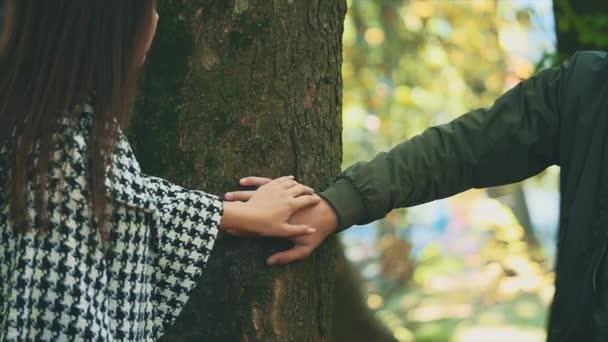 Lassú. A tiszta kezeket összetartják és megveregetik egymást. Közelről. Másold a helyet. Növény. 4K.